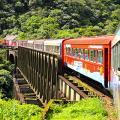 trem-ponte-sao-joao