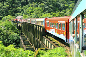Travels to Brazil Atlantic Rain Forest Train